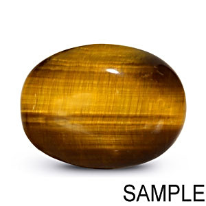 Tiger Eye - Premium [Large]