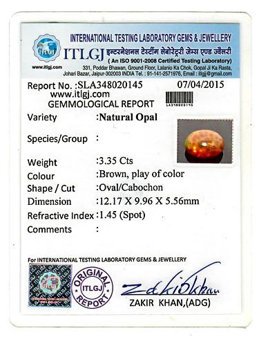 Brown Opal - 3.35 carats