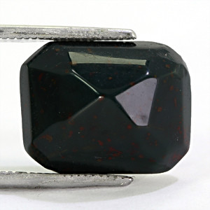 Bloodstone - 10.99 carats