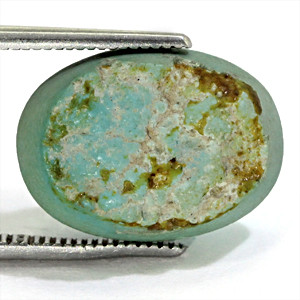 Turquoise - 9.91 carats