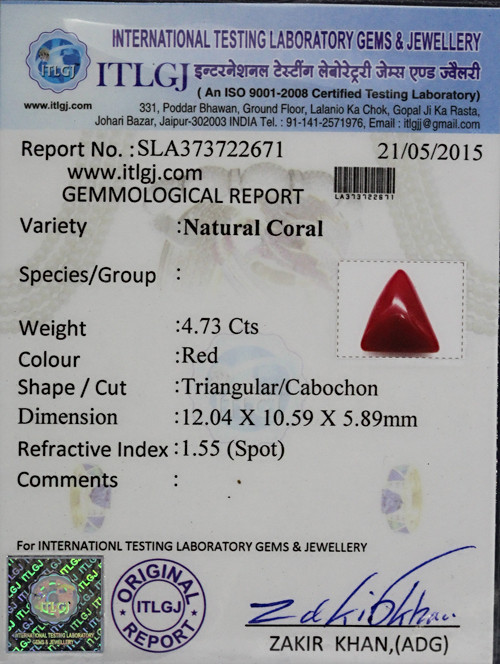 Red Coral - 4.73 carats