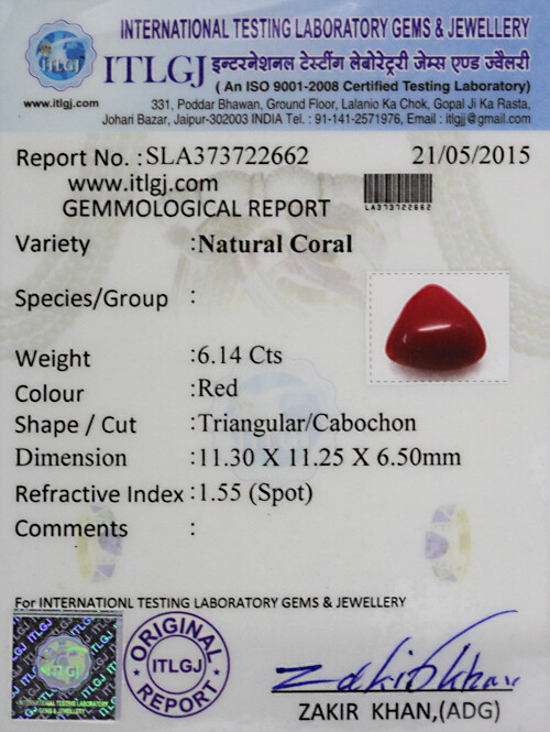 Red Coral - 6.14 carats