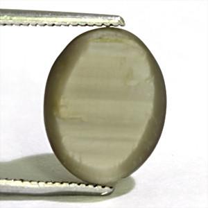 Quartz Cat's Eye - 6.66 carats