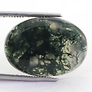 Moss Agate - 13.95 carats