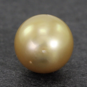 Golden South Sea Pearl - 5.12 carats