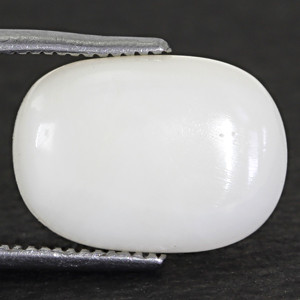 White Coral - 6.11 carats