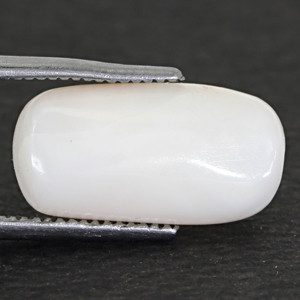 White Coral - 5.94 carats