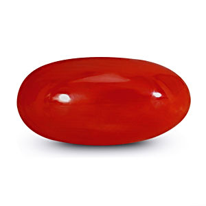 Red Coral - 5.80 carats
