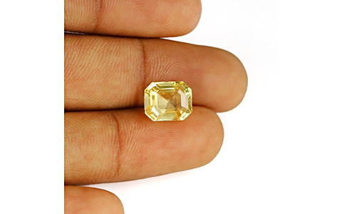 Yellow Sapphire - 6.31 carats