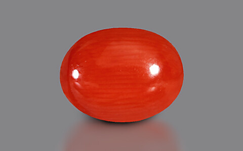Red Coral - 3.35 carats