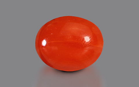 Red Coral - 4.03 carats