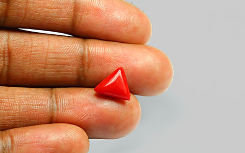 Red Coral - 2.76 carats
