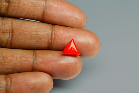 Red Coral - 2.04 carats