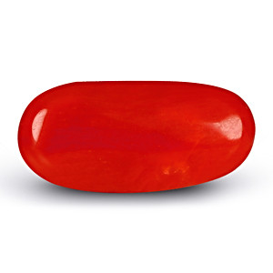 Red Coral - 2.14 carats