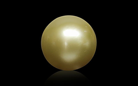 Golden South Sea Pearl - 9.30 carats