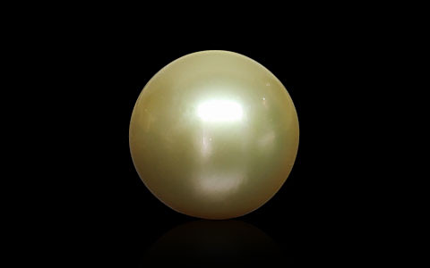 Golden South Sea Pearl - 9.58 carats