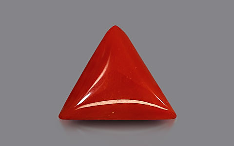 Red Coral - 6.43 carats