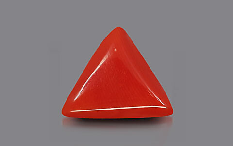 Red Coral - 7.68 carats