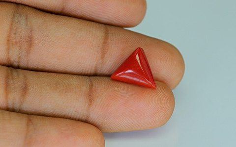 Red Coral - 5.42 carats