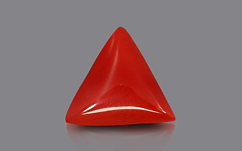 Red Coral - 6.01 carats