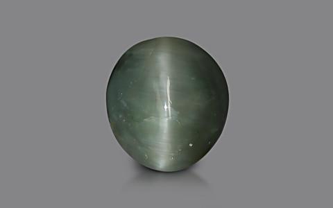 Quartz Cat's Eye - 6.92 carats
