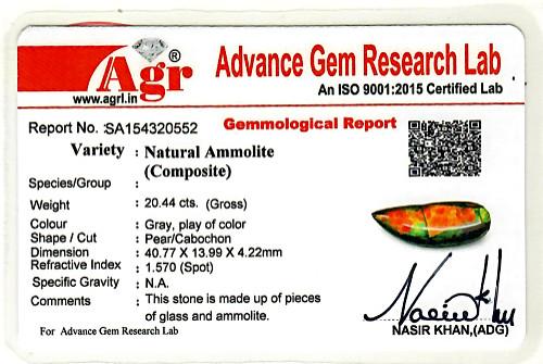 Ammolite - 20.44 carats
