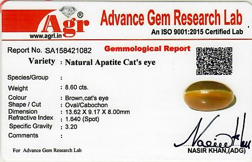 Apatite Cat's Eye - 8.60 carats