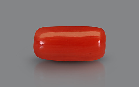 Red Coral - 2.53 carats