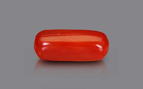 Red Coral - 1.86 carats