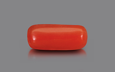 Red Coral - 1.80 carats