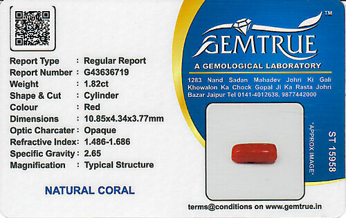 Red Coral - 1.82 carats