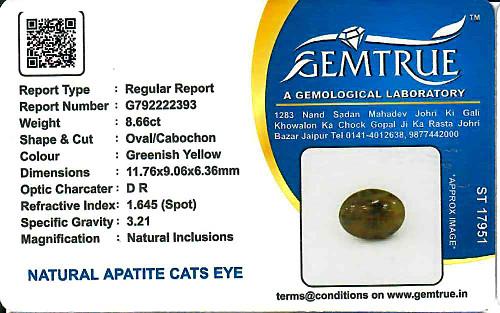 Apatite Cat's Eye - 8.66 carats