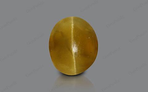 Apatite Cat's Eye - 6.73 carats