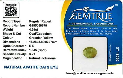 Apatite Cat's Eye - 4.95 carats