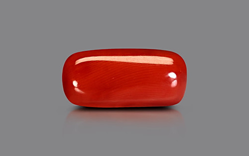 Red Coral - 9.80 carats