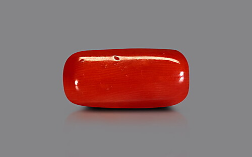 Red Coral - 9.68 carats