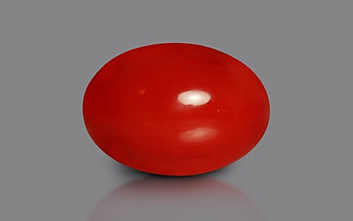 Red Coral - 4.24 carats