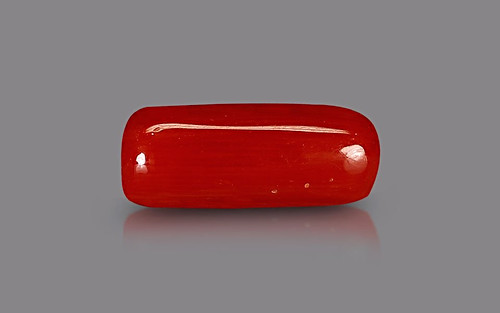 Red Coral - 3.40 carats