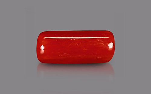 Red Coral - 3.46 carats