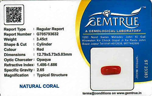 Red Coral - 3.45 carats
