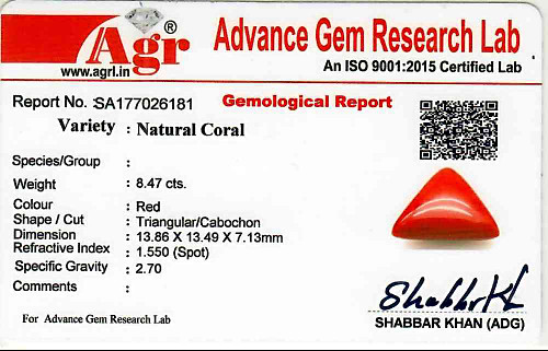 Red Coral - 8.47 carats