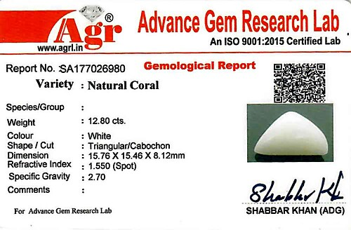 White Coral - 12.80 carats