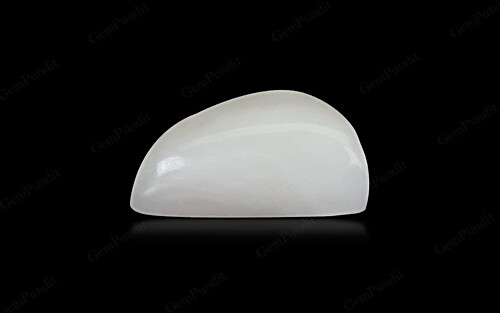 White Coral - 10.86 carats