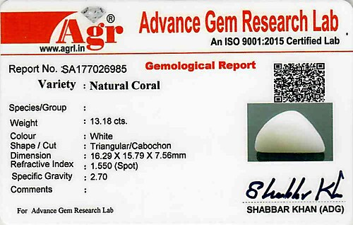White Coral - 13.18 carats