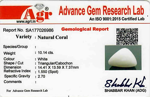 White Coral - 10.14 carats