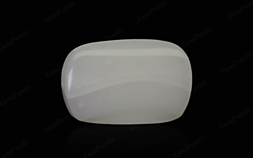 White Coral - 9.10 carats